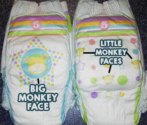 bigmonkeyface